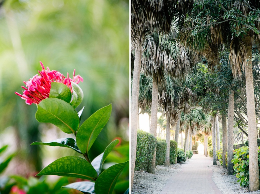 1-Florals-Palm-Trees-Florida-Photographer-Seattle-Wedding-Photography-by-Betty-Elaine