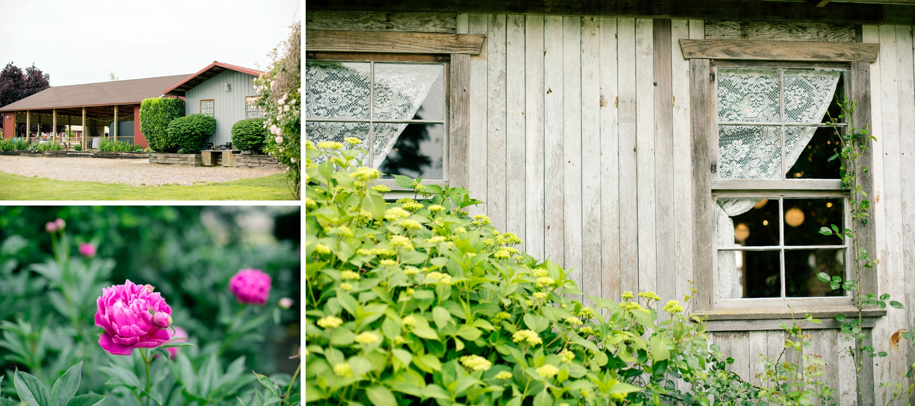 8-Craven-Farm-Barn-Reception-Peony-Countryside-Snohomish-Wedding-Tour-Seattle-Photographer-Photography-by-Betty-Elaine