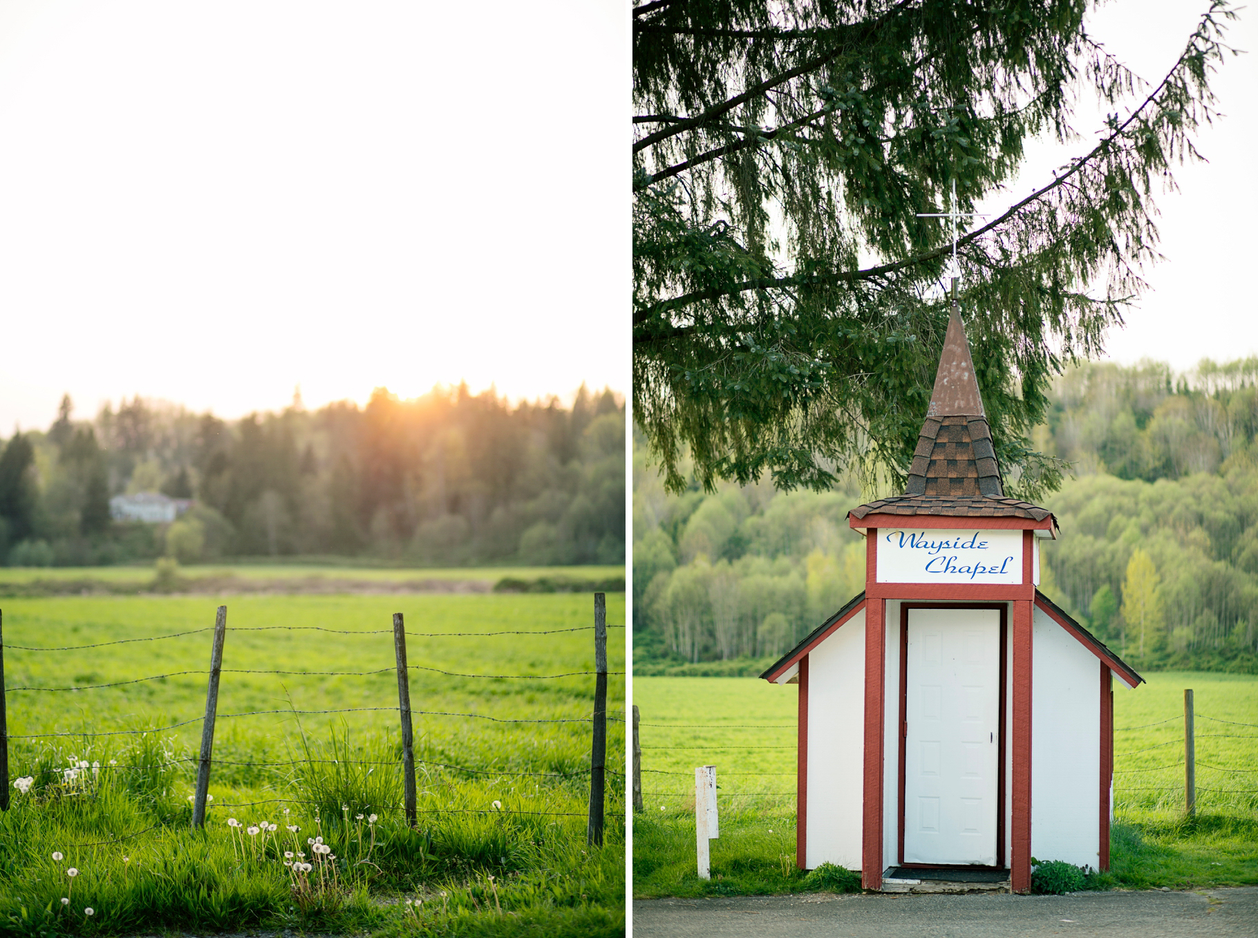25-2015-Photographer-Year-in-Review-Elopement-Wayside-Chapel-Seattle-Wedding-Photography-by-Betty-Elaine