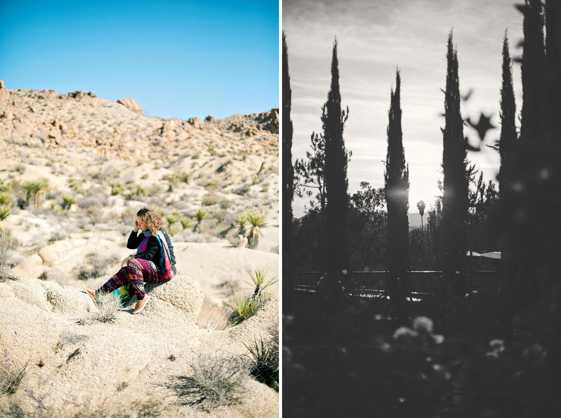 3-2015-Photographer-Joshua-Tree-National-Park-Arizona-California-Temecula-Winery-Year-in-Review-Seattle-Wedding-Photography-by-Betty-Elaine
