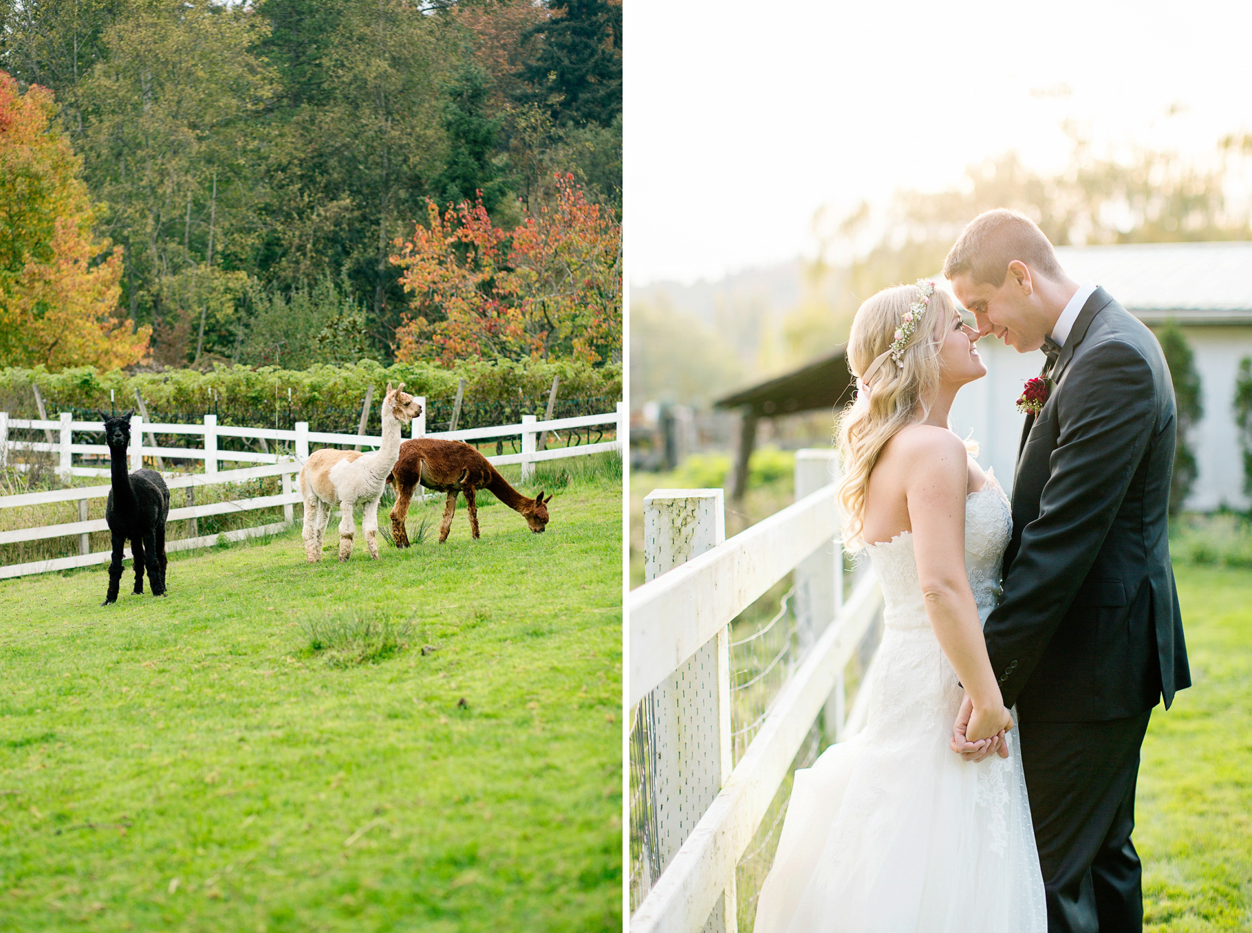 77-2015-Photographer-Year-in-Review-Woodinville-DeLille-Cellars-Seattle-Wedding-Photography-by-Betty-Elaine