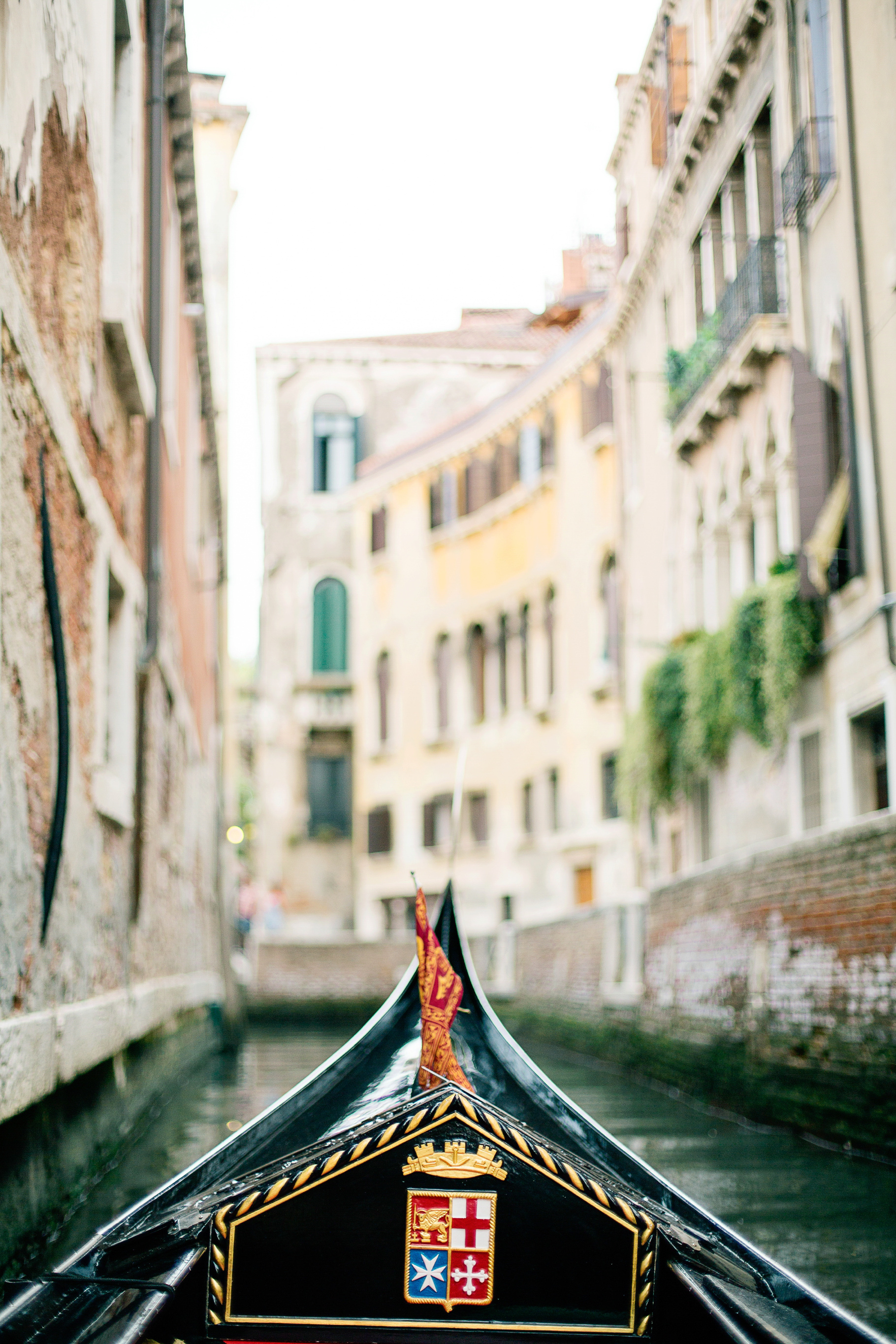 Venice-Italy-Europe-Travel-Anniversary-Trip-Photography-by-Betty-Elaine_0010