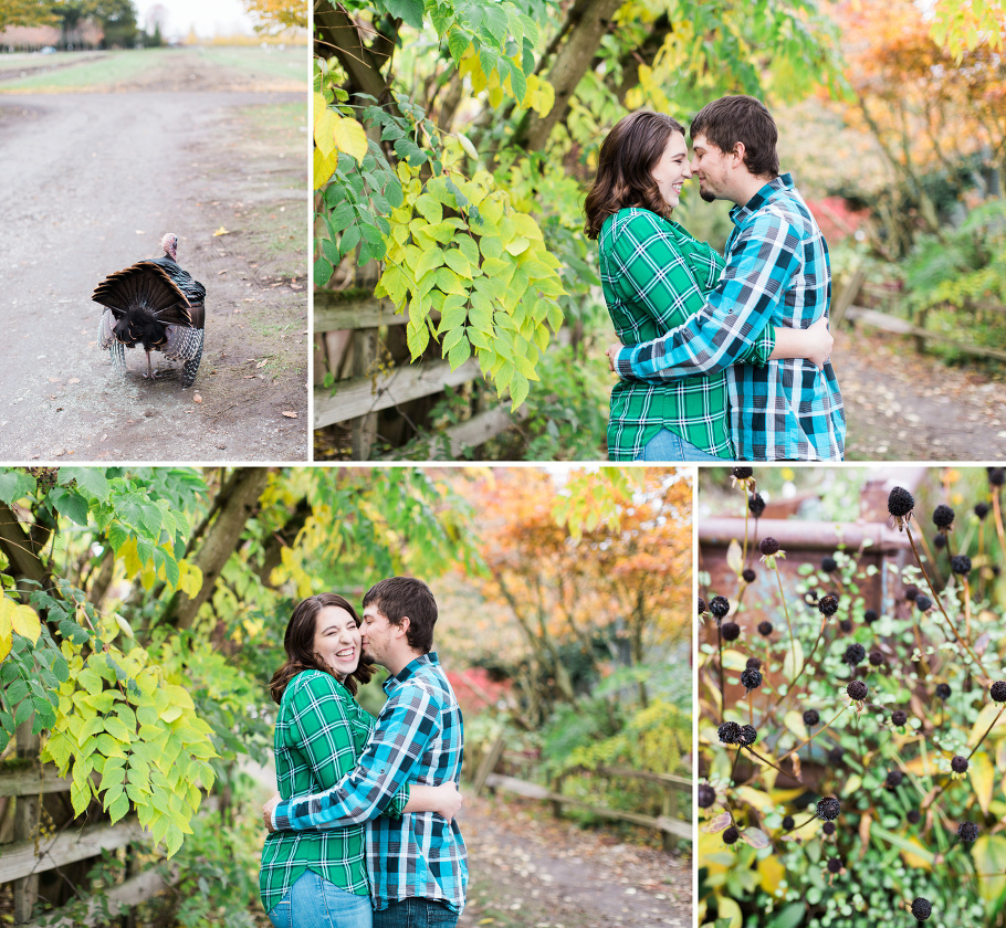 craven-farm-snohomish-engagement-session-photography-seattle-wedding-photographer-2