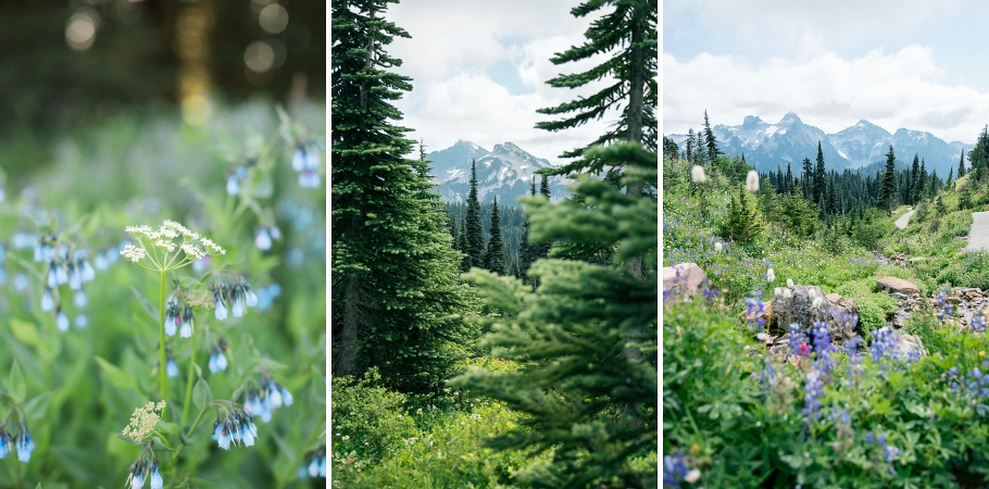 choosing-meaningful-location-engagement-photography-seattle-wedding-photographer-mt-rainier-national-park-paradise