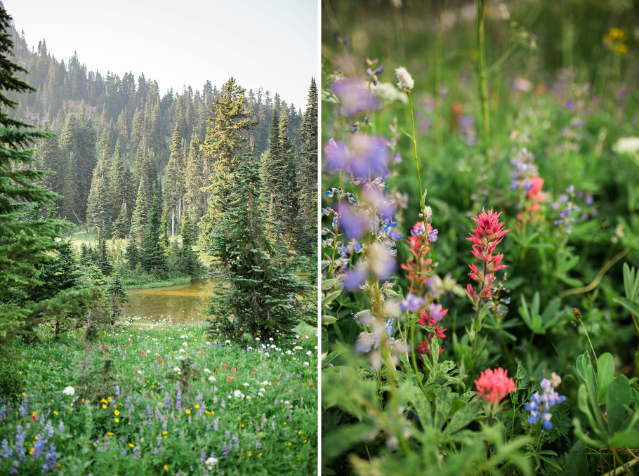 Tipsoo-Lake-Mt-Rainier-Wildflowers-Wedding-Photographer-Seattle-Photography-2
